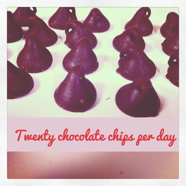 twenty chocolate chips per day