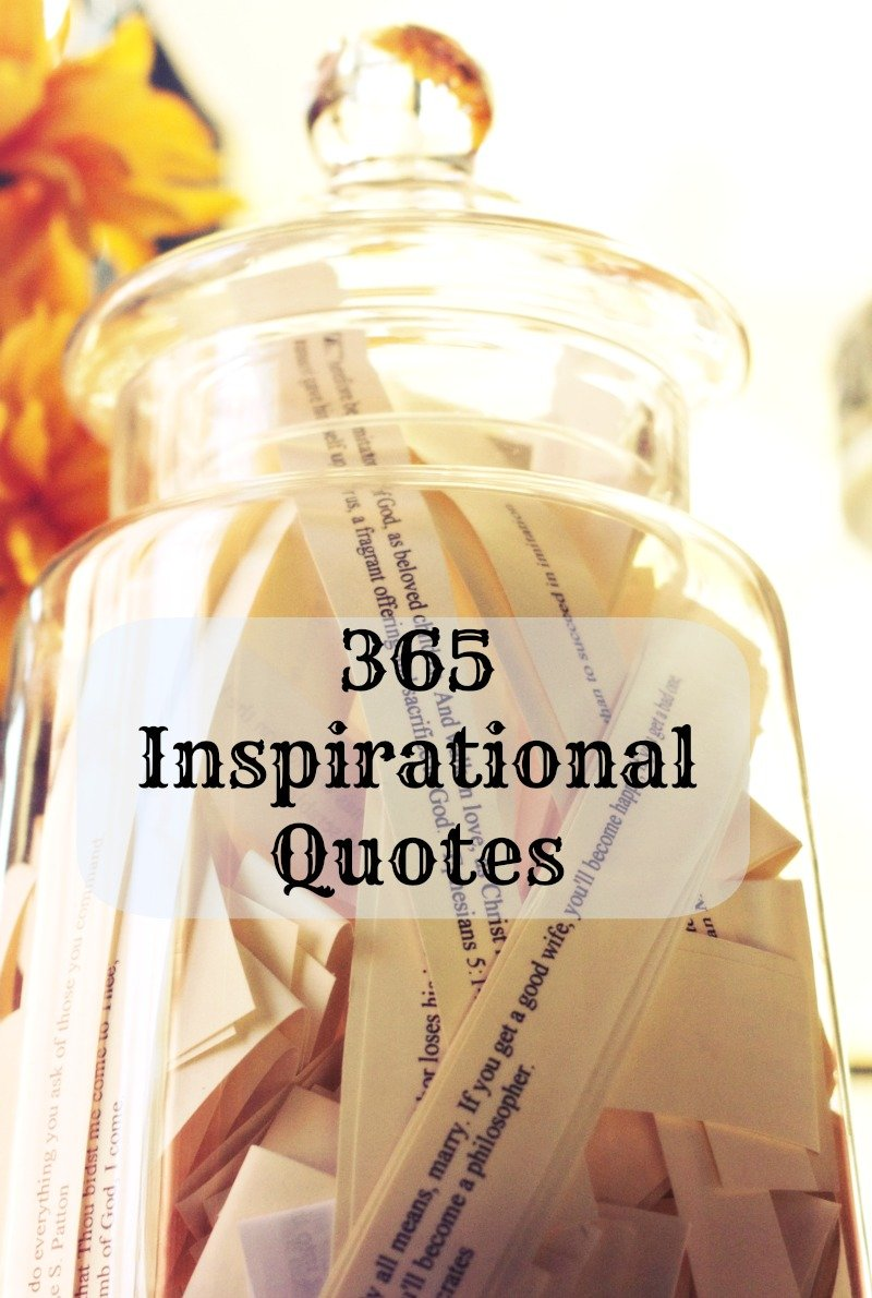 funny quotes about gift giving quotesgram