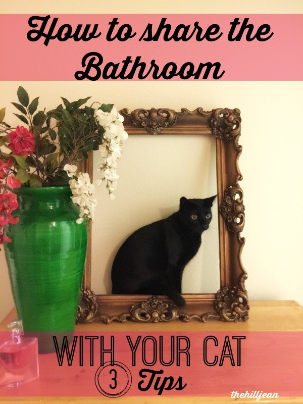 litter box in bathroom